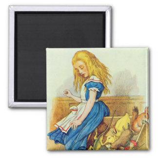 Alice Upsets the Jury-Box Magnet