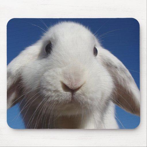 Alice - White Lop Rabbit Mouse Pad
