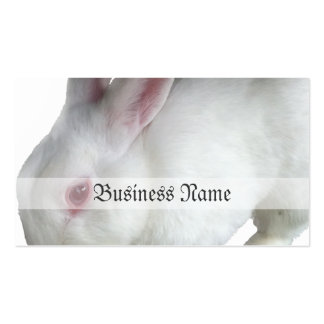 Alice's rabbit business card