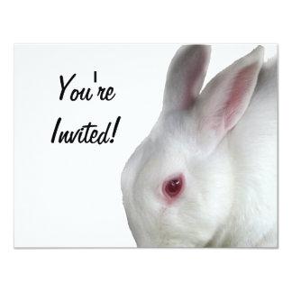 Alice's rabbit card