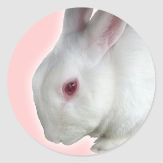 Alice's rabbit classic round sticker