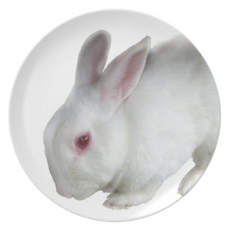 Alice's rabbit dinner plate