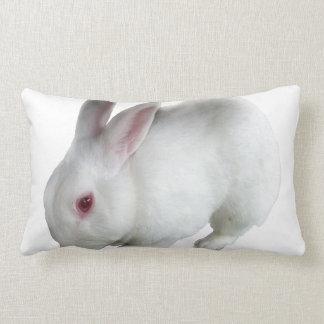 Alice's rabbit pillow