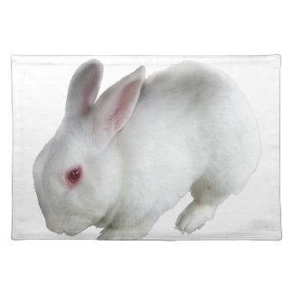 Alice's rabbit placemat