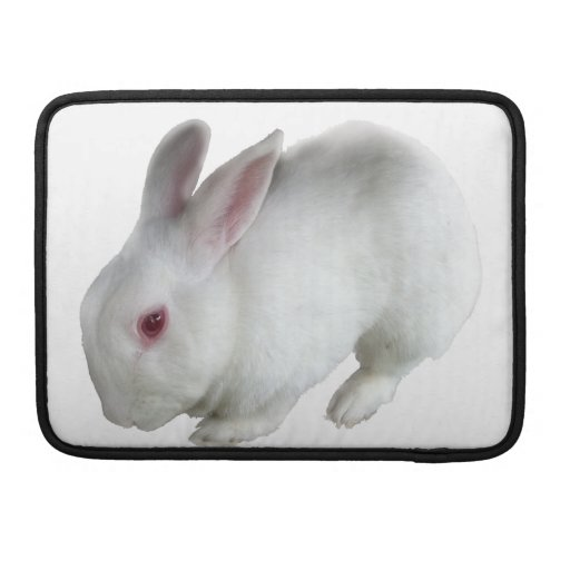 Alice's rabbit sleeves for MacBooks