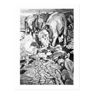 Alicia B. Woodward: Postal del arte de Dinotherium