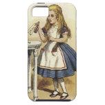 Alicia en caja dura del teléfono elegante del país iPhone 5 Case-Mate protector
