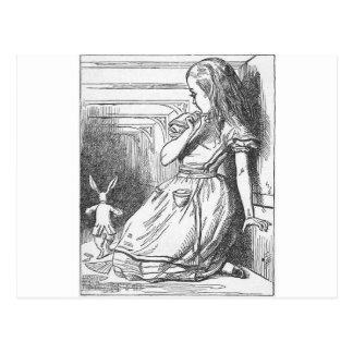 Alicia en el país de las maravillas y el conejo bl tarjetas postales