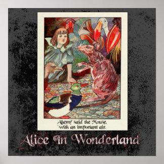 Alicia en poster del país de las maravillas 46