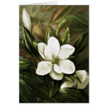Alicia H. Laird: Magnolia Grandflora Greeting Cards