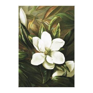 Alicia H Laird Magnolia Grandflora Impresiones De Lienzo