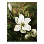 Alicia H. Laird: Magnolia Grandflora Postal