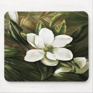 Alicia H Laird Magnolia Grandflora Alfombrillas De Ratones