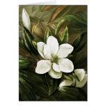 Alicia H. Laird: Magnolia Grandflora Tarjeta De Felicitación