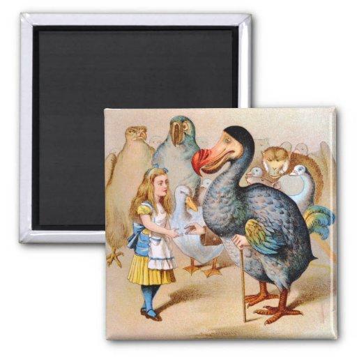 Alicia resuelve el pájaro del Dodo en la raza del  Imanes Para Frigoríficos
