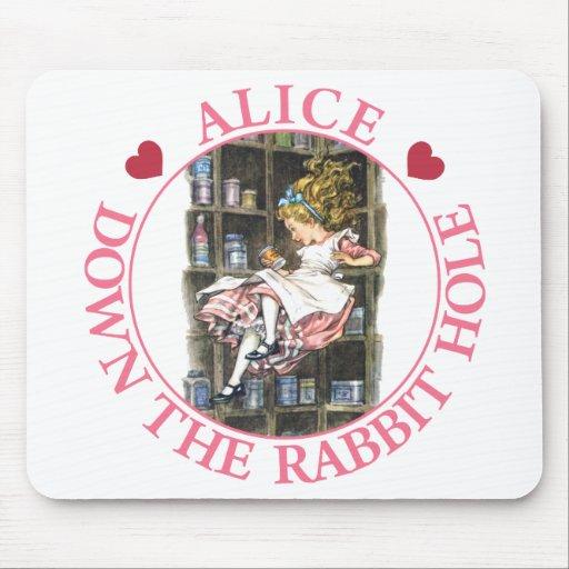 Alicia se cae abajo la madriguera de conejo alfombrillas de raton