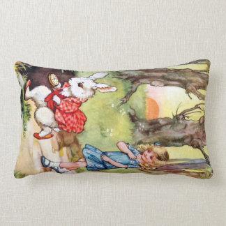 Alicia sigue el conejo blanco al país de las marav almohadas