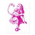 Alicia y el flamenco entintaron rosa tarjeta postal