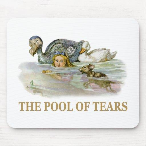 Alicia y la piscina de rasgones mousepad
