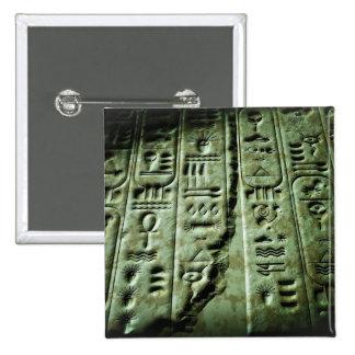 Alien Glyphs 03 Pinback Button