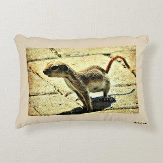 """""""Alien"""" Ground Squirrel Pillow"""