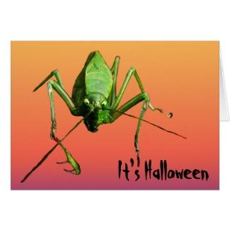 Alien Katydid Halloween