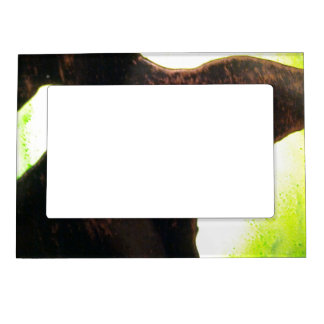 Alien Pod Abstract Magnetic Photo Frame