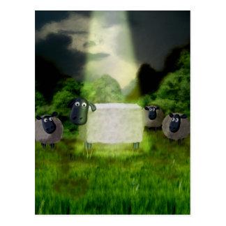 Alien Sheep Experiment Postcard