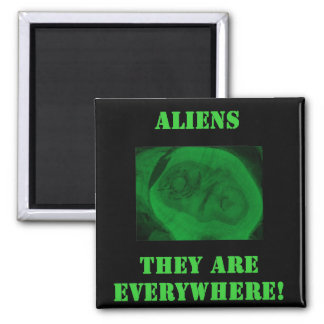 Aliens...They Are Everywhere! 2 Inch Square Magnet