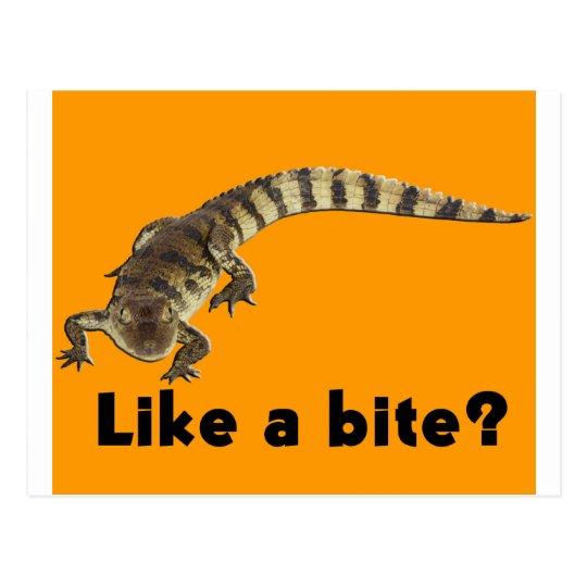 Aligator from JungleWalk.com Postcard