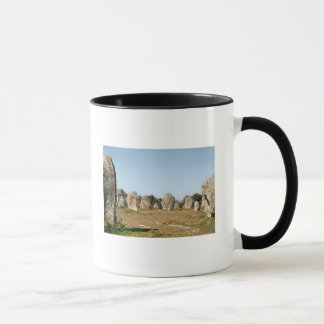 Alignment of standing stones, Megalithic Mug