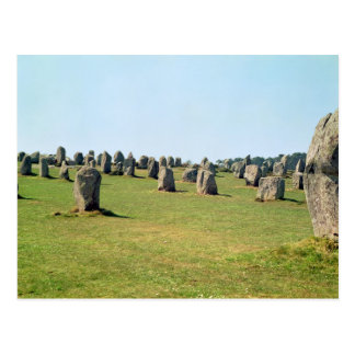 Alignment of standing stones Megalithic Post Card