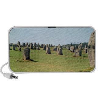 Alignment of standing stones Megalithic Travel Speaker