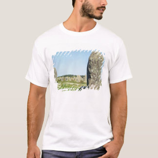Alignment of standing stones, Megalithic T-Shirt