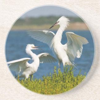 Alimentación adulta rojiza del Egret (Egretta Posavasos Personalizados
