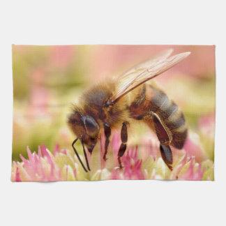 Alimentación apícola de la miel en la flor del toalla de mano