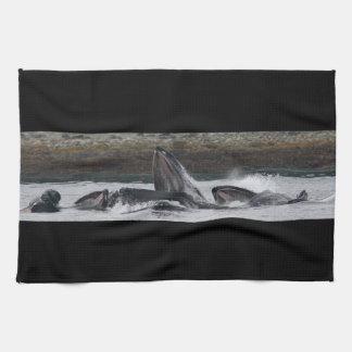 Alimentación de las ballenas jorobadas toalla
