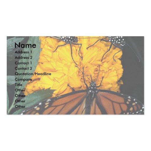 Alimentación de las mariposas de monarca plantillas de tarjetas de visita