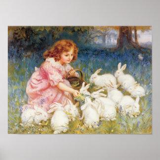 Alimentación de los conejos póster