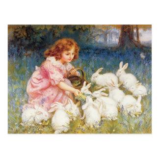 Alimentación de los conejos tarjeta postal