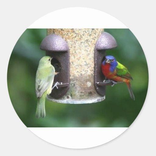 Alimentación de los pájaros pegatina redonda
