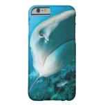 Alimentación del tiburón del tiburón de tigre funda de iPhone 6 barely there