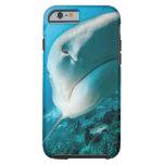 Alimentación del tiburón del tiburón de tigre funda para iPhone 6 tough