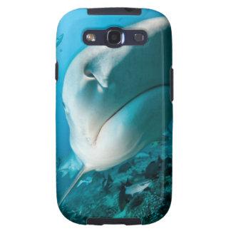 Alimentación del tiburón del tiburón de tigre (Gal Galaxy S3 Protectores