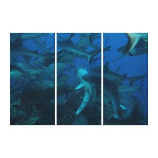 Alimentación del tiburón en la gran barrera de impresión en lona