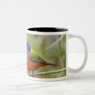 Alimentación masculina pintada del empavesado taza de café de dos colores