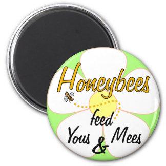 Alimentación Yous y Mees - imán de las abejas