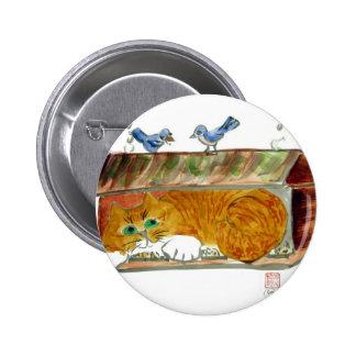 Alimentador del pájaro y gato de tigre del naranja pin