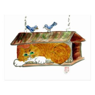 Alimentador del pájaro y gato de tigre del naranja postales