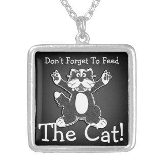 Alimente el collar del gato